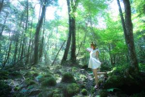 FAIRY TAIL ~ 幻想の森